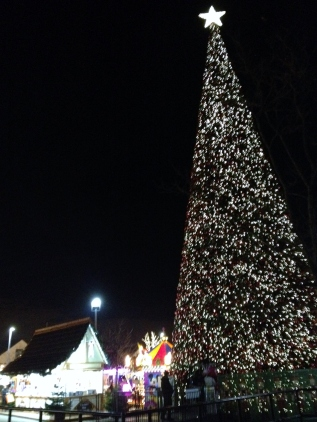 Cheshire Oaks Tree